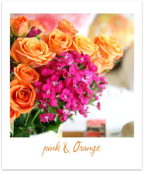 Pink & Orange3