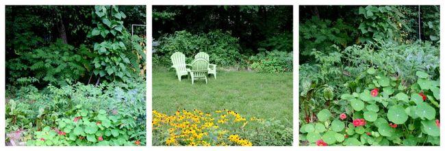 Veggie garden collage