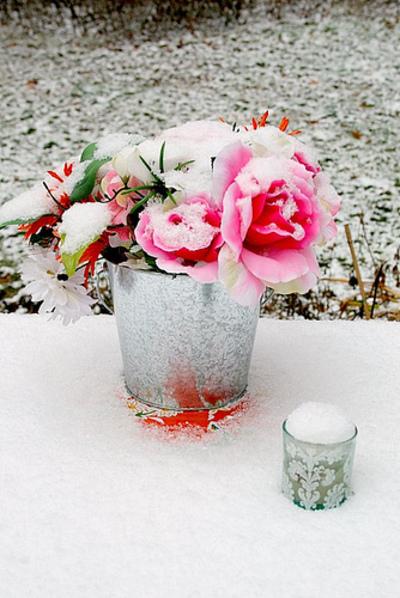 First_snow_closeup_flik